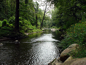 Ridley Creek - Ridley Creek flowing through Ridley Creek State Park