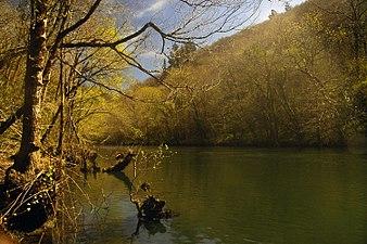 Rio Eume (Fragas del Eume).jpg