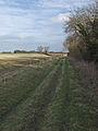 Riplingham farm track - geograph.org.uk - 711887.jpg