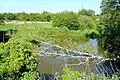 River Kennet - geograph.org.uk - 1340940.jpg