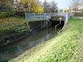 River Leen, Lenton - geograph.org.uk - 1045823.jpg