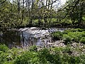 River Lyd - geograph.org.uk - 431632.jpg