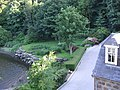 Riverside garden - geograph.org.uk - 467384.jpg