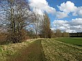 Riverside walk - geograph.org.uk - 745702.jpg