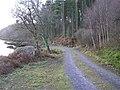 Road at Carrickrevagh - geograph.org.uk - 1118243.jpg