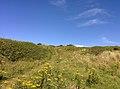 Rock-cornwall-england-tobefree-20150715-165540.jpg