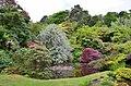 Rock garden, Mount Stuart, Bute-geograph-4005584-by-Jim-Barton.jpg