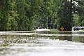 Roman Forest Flood - 4-18-16 (26486286006).jpg