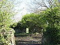 Roofless ruin of the Cefn Coch Woollen Mill - geograph.org.uk - 1269524.jpg