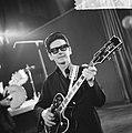 Roy Orbinson ontving gouden plaat voor Pretty Woman in Singel concertzaal, Roy, Bestanddeelnr 917-5750.jpg