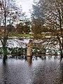 Rozlany liwiec - panoramio.jpg