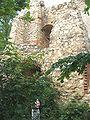 Ruine Hornstein 4.jpg