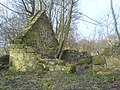 Ruined house near the Binn. - geograph.org.uk - 311464.jpg