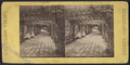 Rustic Arbor, Prospect Park, N.Y, from Robert N. Dennis collection of stereoscopic views.png