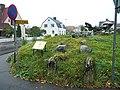 Södra Ängshögens gånggrift (Raä-nr Falköping 9-1) 3920.jpg