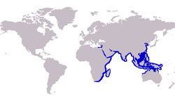 S. sihama distribution.PNG