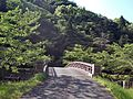 Sakurabashi Bridge in Magabuchi Dam.jpg