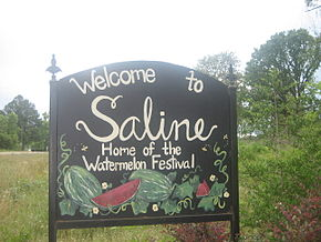 Saline, LA, welcome sign IMG 0714.JPG