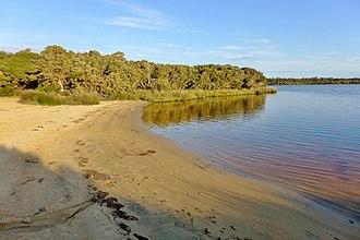 Hardy Inlet - Sandy Beach, Molloy Island, 2015