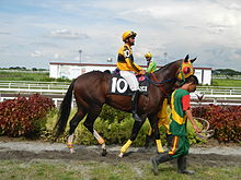 Horse race betting philippines embassy koersverloop bitcoins news