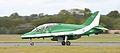 Saudi Hawk 8805.jpg