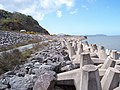 Sea defences - geograph.org.uk - 775461.jpg