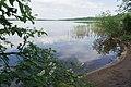 Sestroretsky Spill 2020-06-07-1.jpg