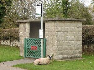 Rhes-y-cae - Bus shelter and sheep, Rhes-y-cae.