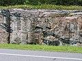 Shield P7170062.jpg