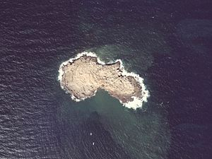 Showa-iwojima of the volcanic island Aerial Photograph.jpg