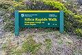 Silica Rapids Walk (1).jpg