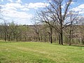 Siloam Mountain Park - panoramio.jpg