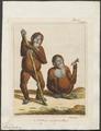 Simia satyrus - 1810-1819 - Print - Iconographia Zoologica - Special Collections University of Amsterdam - UBA01 IZ19800011.tif