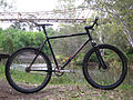 Single-speed mountain bike.jpg