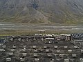 Sled Dogs in Svalbard (2003) 01.jpg