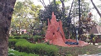 Parassinikkadavu Snake Park - A shot from the snake park parassinikkadavu