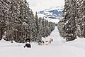 Snowmobiles riding the park road with the Tetons in the background (1de1ee3a-0cb0-47bb-8deb-b4aa3745e9a1).jpg