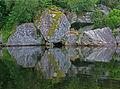 Speilbilde (1118584553).jpg
