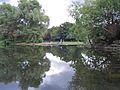 St Stephen's Green 2.jpg