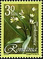 Stamps of Romania, 2006-034.jpg