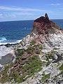 Starr-050404-0034-Panicum fauriei-habitat-Mokeehia-Maui (24114597993).jpg