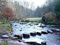 Stepping stones - geograph.org.uk - 480384.jpg