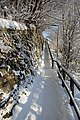Steps at Langlee, Galashiels - geograph.org.uk - 1653886.jpg