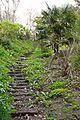 Steps at St Piran's Well (3459672963).jpg