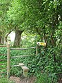 Stile over stock fence - geograph.org.uk - 1294938.jpg