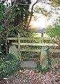 Stone Stile - geograph.org.uk - 283058.jpg