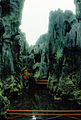 Stone forest 1983-8.jpg