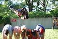 Street Acrobats in DC - 2013-06-07 - 16.JPG