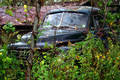 Studebaker-truck - West Virginia - ForestWander.png