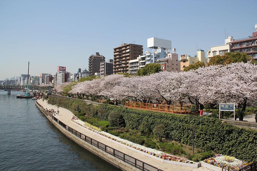 Sumida Park 2011
